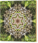 Jack In The Pulpit Mandala Wood Print