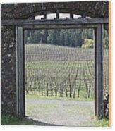 Jack London Ranch Winery Ruins 5d22132 Wood Print