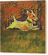 Jack Russell In Autumn Wood Print by Jane Schnetlage