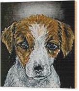 Jack Russell Terrier Angel Wood Print by Jay  Schmetz