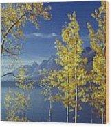 1m9206-jackson Lake And Aspens, Wy Wood Print