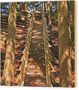 Jacobs Ladder Wood Print