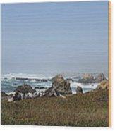 Jagged California Coastline Wood Print