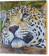 Jaguar Big Cat Original Oil Painting Hand Painted 8 X 10 By Pigatopia Wood Print