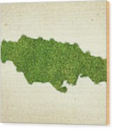 Jamaica Grass Map Wood Print by Aged Pixel