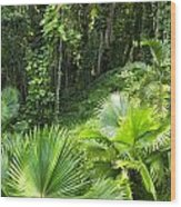 Jamaican Jungle Wood Print