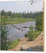 James Creek Pond Wood Print