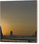 James Island Sunset And Birds Wood Print