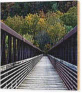 James River Footbridge Wood Print