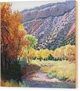 Jamez Fall Wood Print