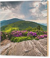 North Carolina Blue Ridge Mountains Landscape Jane Bald Appalachian Trail Wood Print