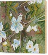 Jane's Apple Blossoms 1 Wood Print