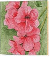 Jane's Flowers Wood Print