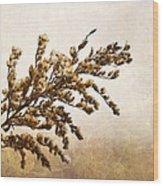 Janice Joplin Wood Print