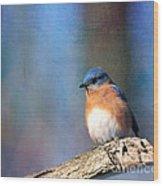 January Bluebird Wood Print