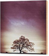 January Dusk Wood Print
