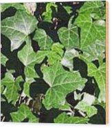 January Greenery Wood Print
