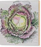 January King Cabbage  Wood Print