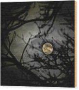 January Moon In Treetops Wood Print