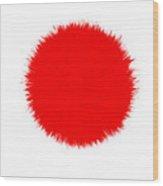Japan Flag Wood Print by Daniel Hagerman