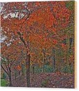 Japanese Cherry Tree Wood Print