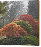 Japanese Garden In The Fall Season Wood Print