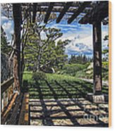 Japanese Garden Of Water And Fragrance 2 Wood Print