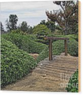 Japanese Garden Of Water And Fragrance 3 Wood Print