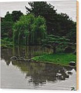 Japanese Garden Point Wood Print