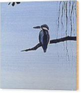 Japanese Kawasemi Kingfisher Feng Shui Water Wood Print