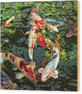 Japanese Koi Fish Pond Wood Print