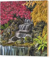 Japanese Laced Leaf Maple Trees In The Fall Wood Print