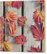 Japanese Maple Tree Leaves On Wood Deck Wood Print by David Gn