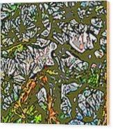 Japanese Pine Wood Print by Jean Hall