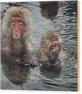 Japanese Snow Monkeys Enjoying The Hot Wood Print