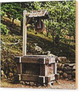 Japanese Tea Garden Well Wood Print