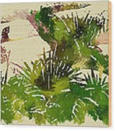 Japanese Washi Garden Reflections Wood Print