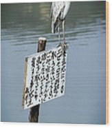 Japanese Waterfowl - Kyoto Japan Wood Print