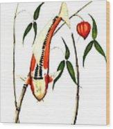 Japnese Koi Shuisui Chinese Lantern Painting Wood Print