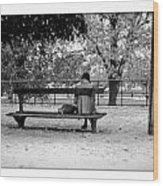 Jardin De Tuileries Wood Print