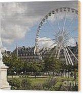 Jardin Des Tuileries Wood Print