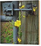 Jasmine Flowers On Gate Latch Wood Print