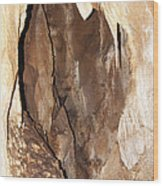 Javoricko Stalactite Cave Wood Print