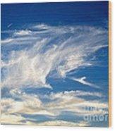 Jaws And Jet Nevada Sky Wood Print