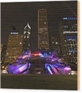 Jay Pritzker Pavilion Chicago Wood Print