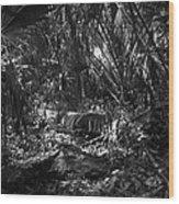 Jb Starkey Number One Wood Print