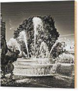 Jc Nichols Memorial Fountain Bw 1 Wood Print