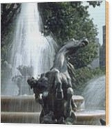 J.c.nichols Fountain 1 Kc.mo Wood Print