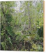 Jean Lafitte National Preserve Swamp Louisiana Wood Print