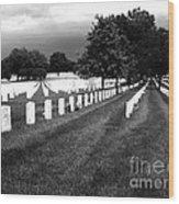 Jefferson Barracks National Cemetery Wood Print
